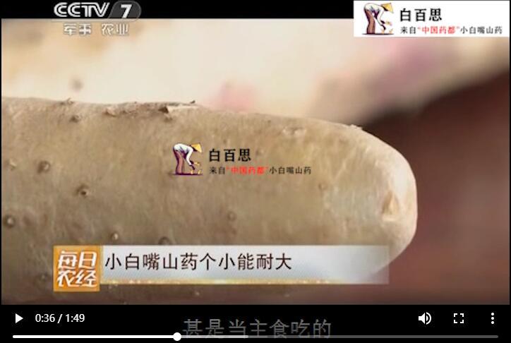 CCTV7每日农经专题报道小白嘴山药