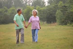 老人吃:益寿延年
